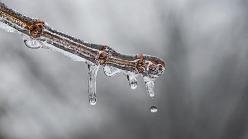 ice-570500_1280